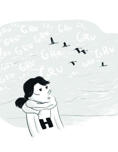 illustration grenoble - lac du der