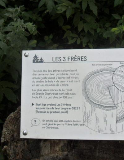 illustration panneaux sentier pédagogique ONF chartreuse