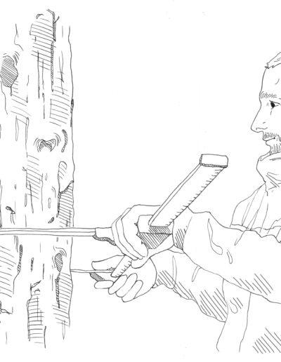 illustration sentier forestier chartreuse