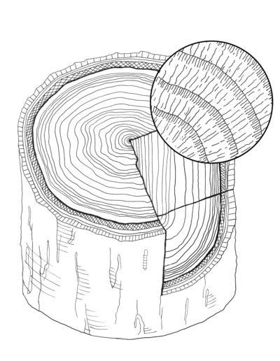 Illustration sentier pédagogique Grenoble